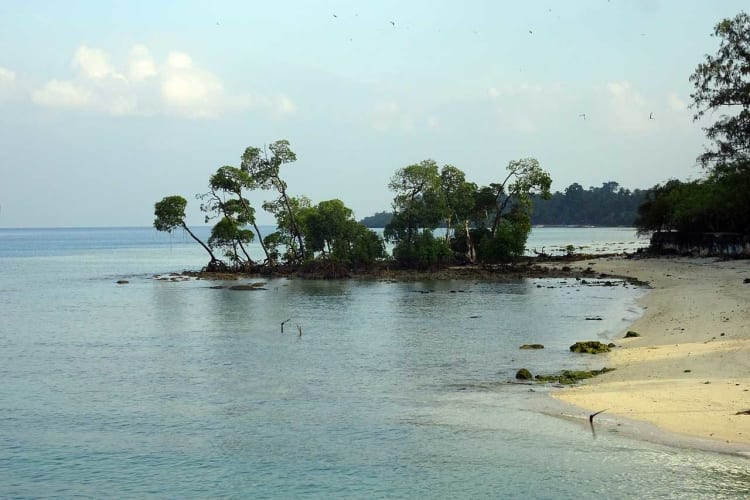 The Andaman Story Tour Package