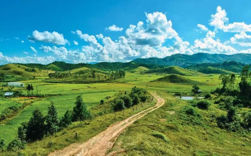 Himalayan Splendor - Sikkim and Darjeeling