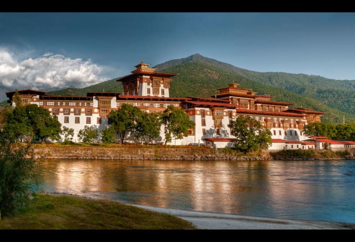 Bhutan Delight - Ex Bagdogra