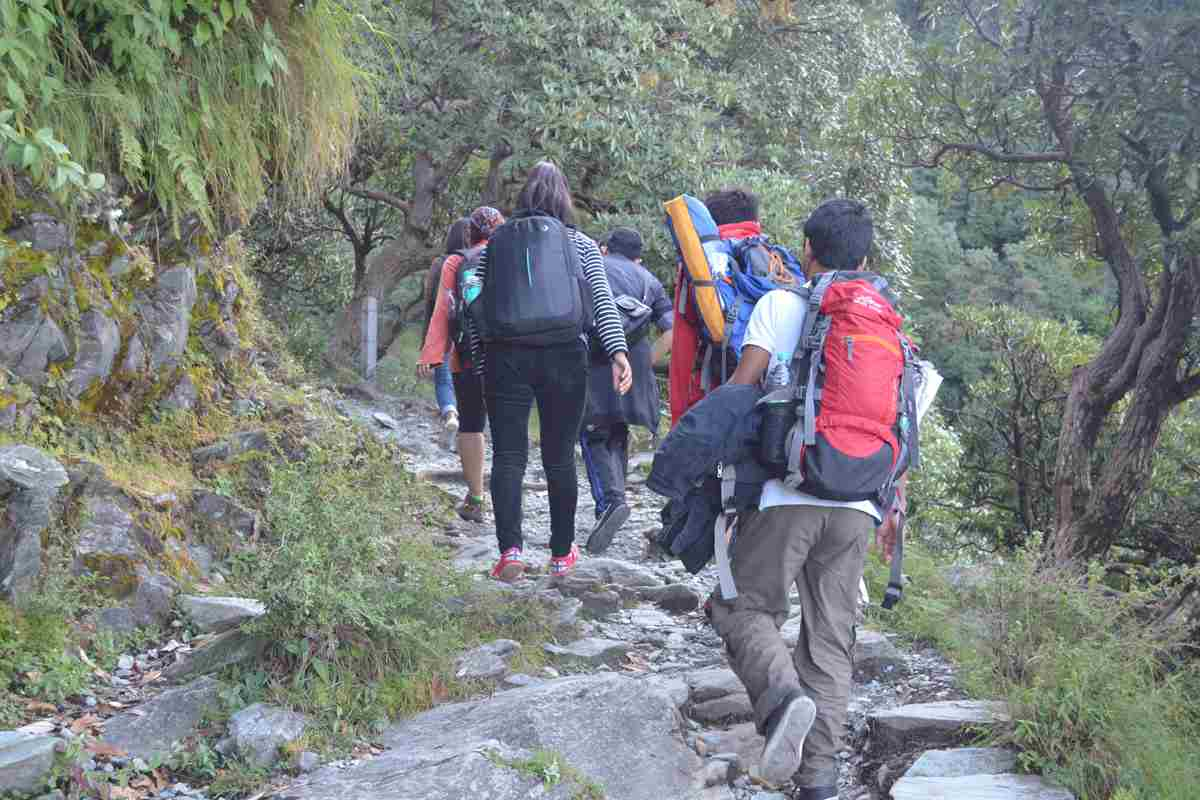 The Mcleodganj and Triund Trek- Ex Delhi