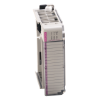 Combo 6Pt 24 VDC Snk/Src In, 4Pt VAC/VDC Relay Out -CustomCC