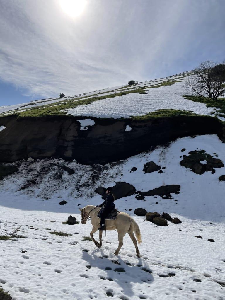 רכיבה ע ל סוסים במדרונות מושלגים בצפון הארץ