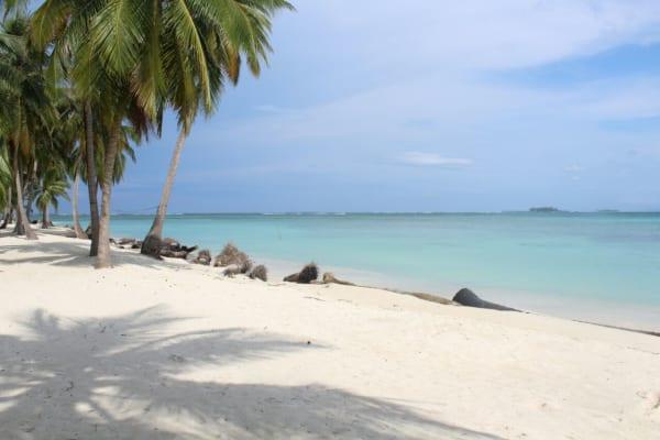4 días y 3 noches en Isla Niadub (Diablo) - San Blas