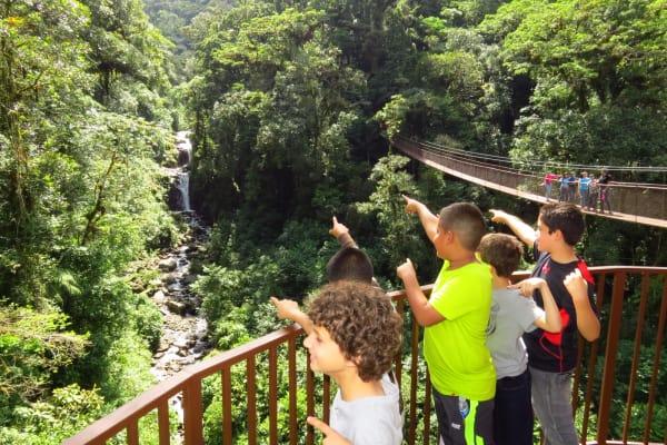Puentes colgantes de Río Cristal