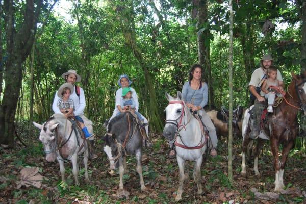 Paseo a Caballo en las escénicas tierras altas de Boquete