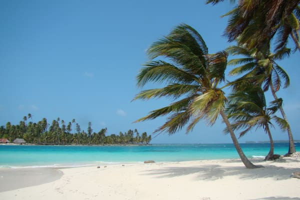 Estadía en San Blas: Isla Franklin o Senidup con Tour incluido