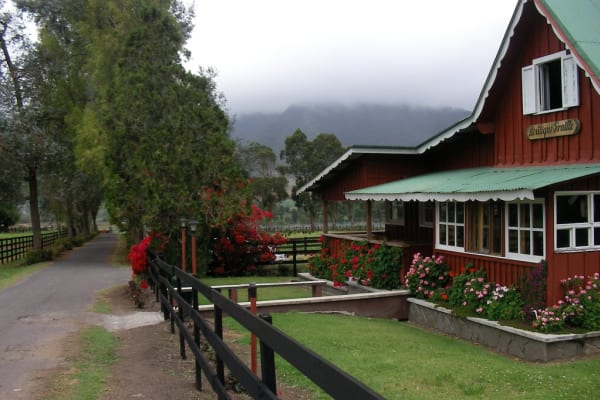 Tour a Cerro Punta, Haras  y los Petroglificos