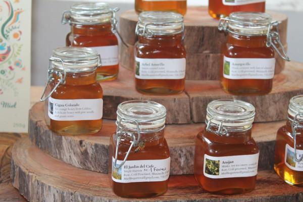 Tour de la Miel con degustación y visita al Mariposario
