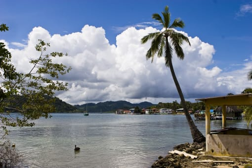 Transporte de Ida y vuelta a Isla Grande