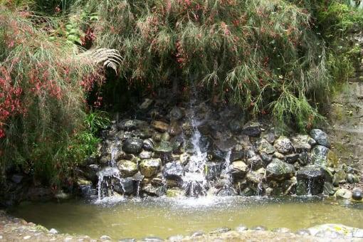 Tour a la Reserva natural de Nirvana y hacienda el Paraiso