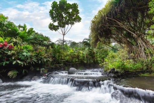 Tour al Volcán Arenal y Aguas Termales de Tabacón desde San José