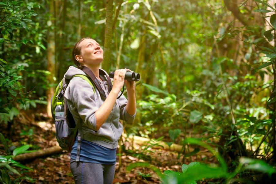Avistamiento de Aves en en Boquete (3 horas)