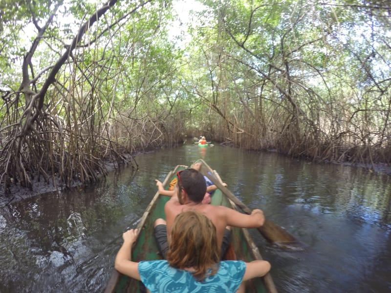 Tour en kayak o Cayuco, Bahía de Portobelo Ríos y Manglares