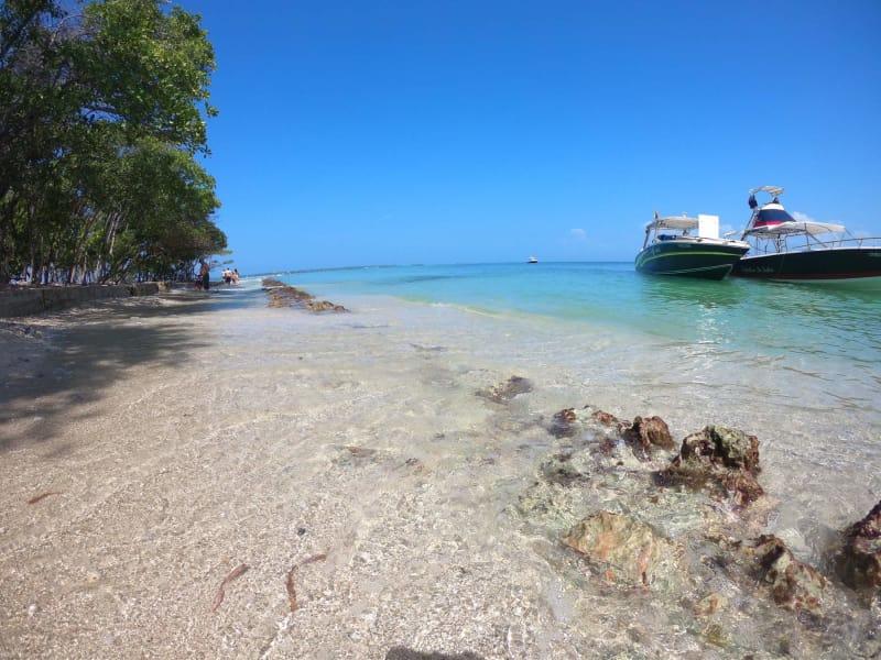 Pasadia al Aviário Nacional y Playa Blanca Barú