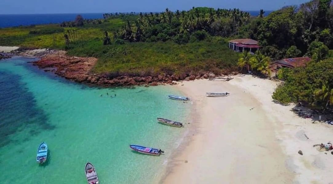 Isla Iguana Tour Pedasi