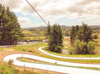Silverdale Adventure Park