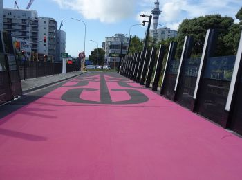 The Lightpath Cycleway