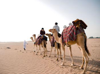 Al Marmoon Bedouin Experience