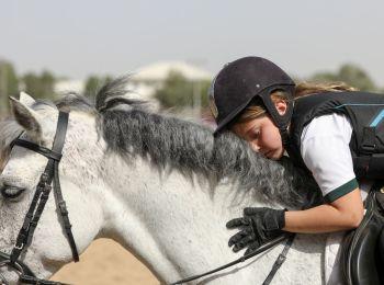 The Desert Palm Riding School