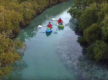 Sea Hawk Water Sports & Adventures