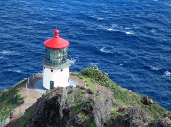Makapuʻu Point Lighthouse Trail