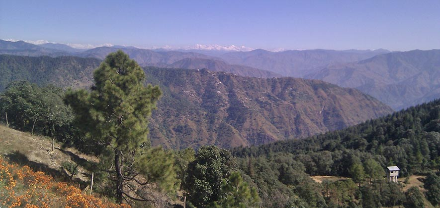 Chail - Top Hill Stations in India