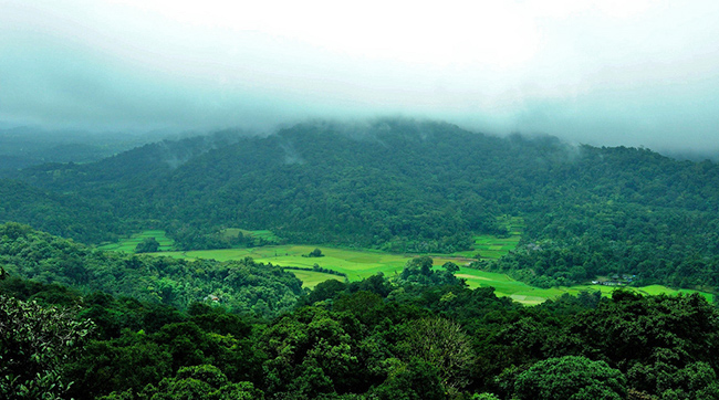 Coorg - Top Hill Stations in India
