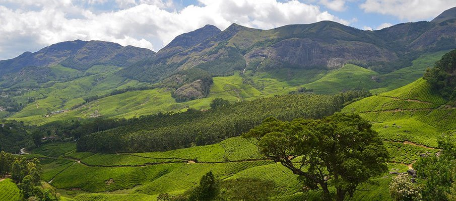 Munnar - Top Hill Stations in India