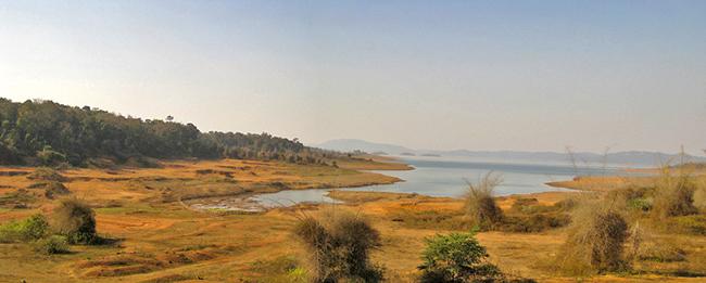 Dandeli National Park - Top National Park in India