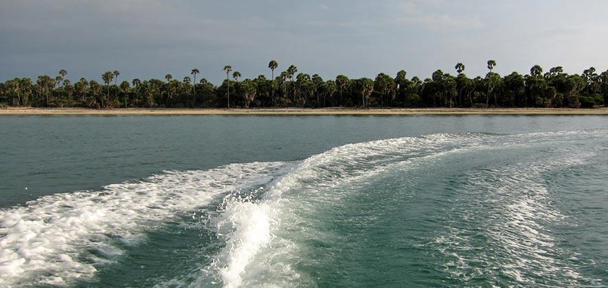 Mannar marine national park - Indian wildlife sanctuaries
