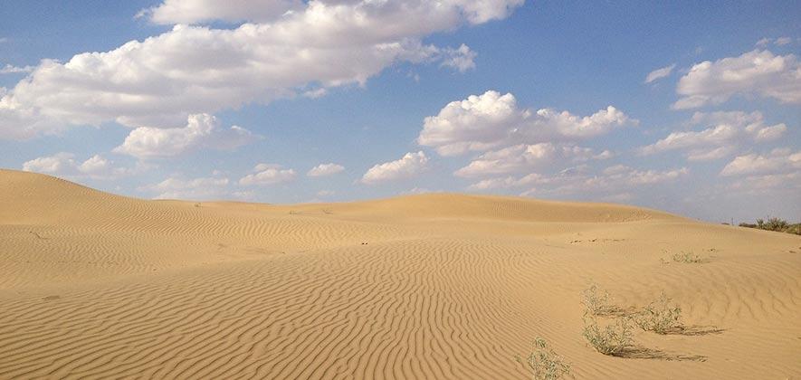 Desert national park Jaisalmer - National Parks in India