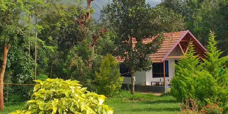 Cloverleaf - Homestay in Chikmagalur