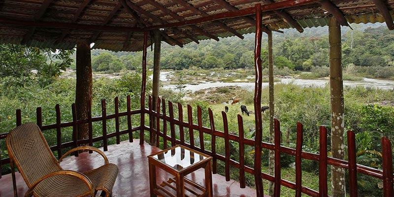 Shanti Kunj Homestay - Chikmangaluru Home Stay