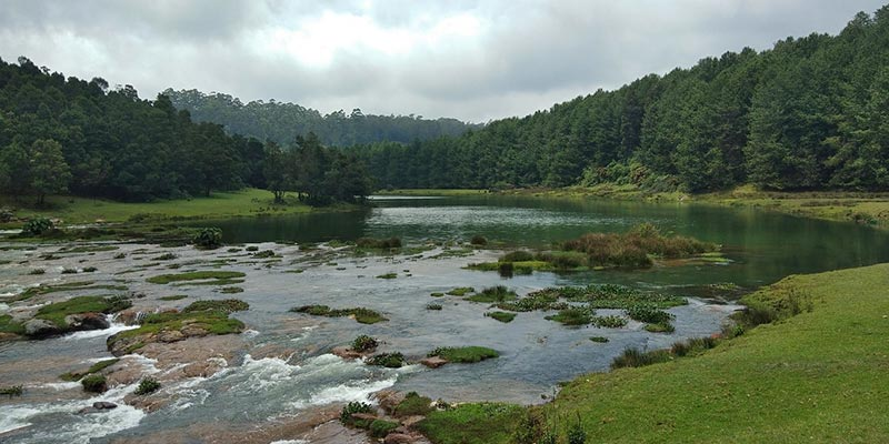 Ooty - Hill Stations near Bangalore