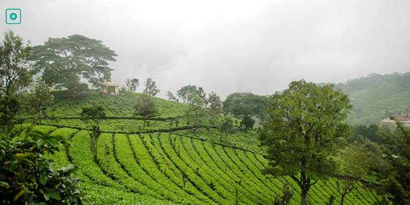 Kotagiri - Hill Stations near Bangalore