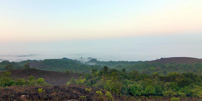 Coorg - Hill Stations from Chennai