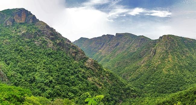 Kolli Hills - Hill Stations near Chennai