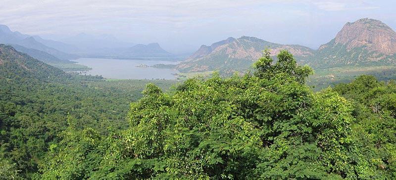 Palani Hills - Closest Hill Stations from Chennai
