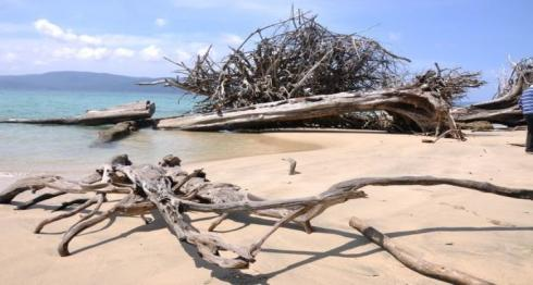 chidiyatabu beach in andamans is a very popular destination among honeymoon couples