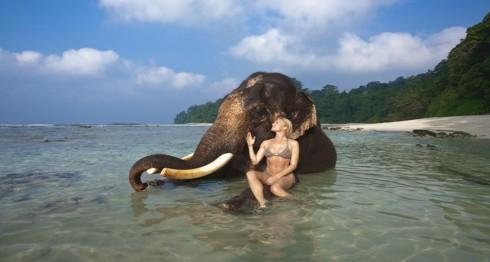 elephant-beach-havelock