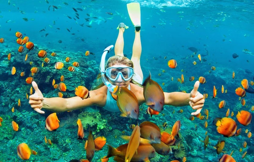 red skin island snorkeling