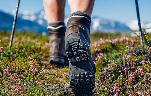 Trekking in mount harriet national park