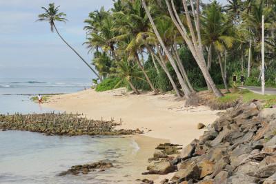 Travel blog image for Jan. 6, 2015 in Polhena, Sri Lanka