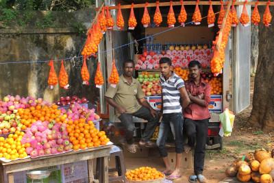 Travel blog image for Jan. 17, 2015 in Jaffna, Sri Lanka