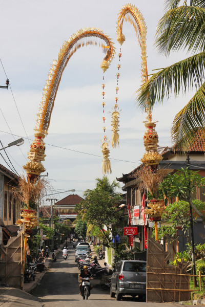 Travel blog image for Feb. 12, 2015 in Ubud, Bali