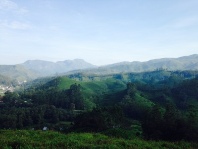 Travel blog image for Oct. 14, 2015 in Munnar, India