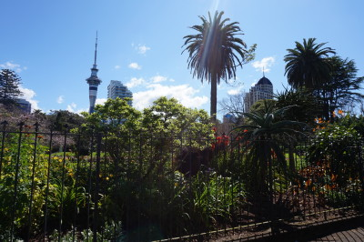 Travel blog image for Sept. 26, 2015 in Auckland