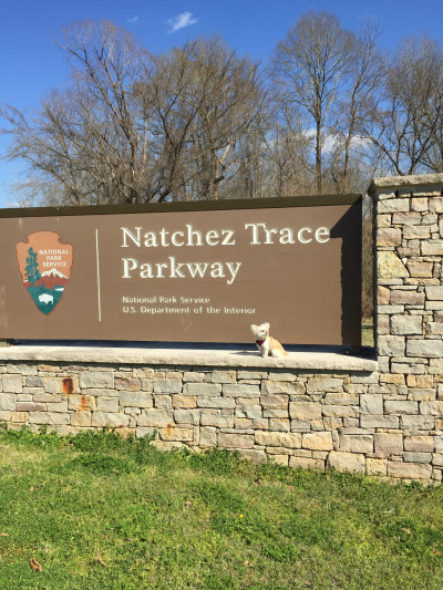 Travel blog image for Feb. 28, 2016 in Natchez, MS