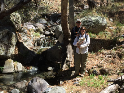 Travel blog image for April 3, 2016 in Coronado National Forest, AZ