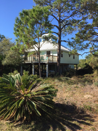 Travel blog image for Jan. 1, 2017 in Cape San Blas, FL